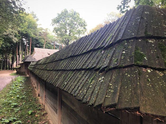 Roof Building Striha Green Village