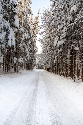 Shades Of Winter Slovenia Beauty In Nature Cold Temperature Day Landscape Nature No People Outdoors Road Scenics Sky Snow Snowing The Way Forward Tire Track Tranquil Scene Tranquility Transportation Tree Weather Winter