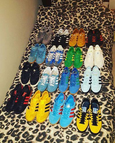 My collection so far 😎👍😎👟Adicasual Adiporn Threestripes Spezial Hamburg Gazelles Adidasjamaica Adidashawaii Adidas70s Adidastopanga Adidassl72 Adicollection Adidashamburg