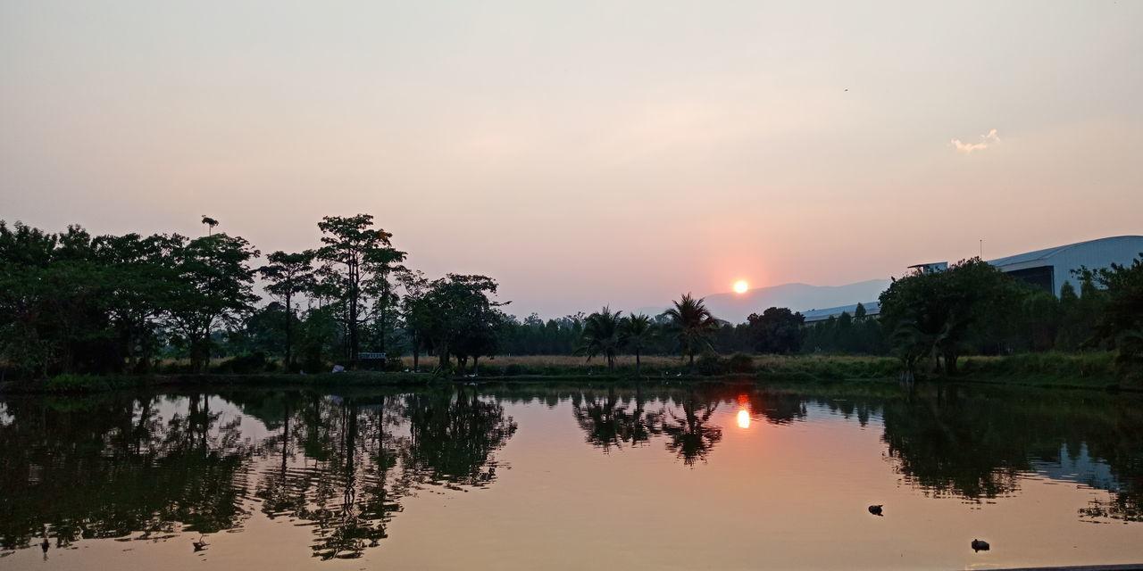 Tree Water Sunset Lake Sun Reflection Dusk Sky Landscape