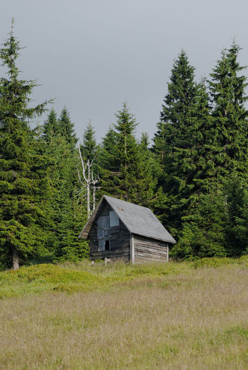 Wooden hut at the edge of the forest Hiking Karkonosze Norway Spruce Sudety Beauty In Nature Building Exterior Built Structure Forest Giant Mountains Grass Green Color Mountain Hut Outdoors Picea Abies Scenics Shelter Tranquil Scene Tree Wooden Hull
