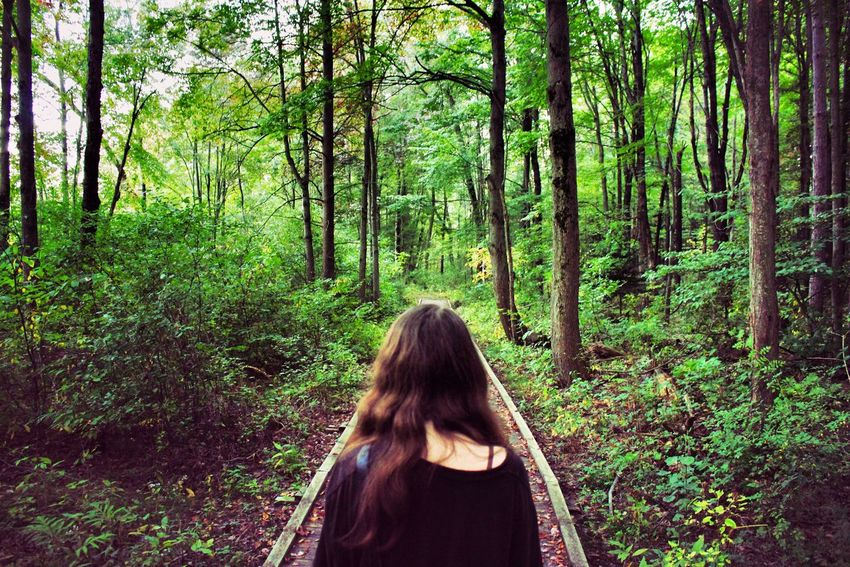 Forest Tree Rear View Nature One Person WoodLand Long Hair Outdoors Day Women Real People Adventure Lifestyles Landscape Beauty In Nature People Only Women Adult Adults Only