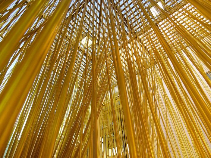 Yellow Lacma Penetrable Losangeles 43 Golden Moments