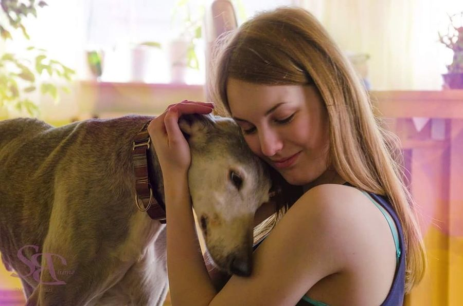 Galgoespañol Dog Love Special Moment