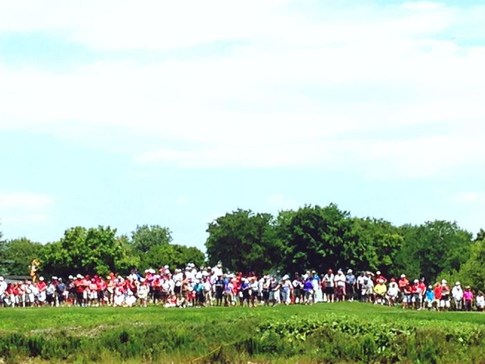 RBC Canadian Open Golfing Tournament 2015  Hole In One! Crowd Spectator The Grass Is Green