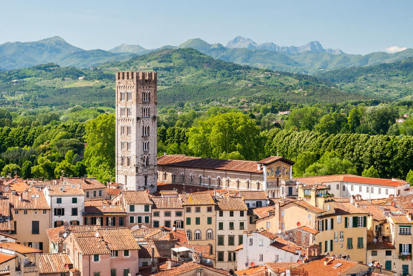 Aerial view of Lucca, in Tuscany, during a sunny afternoon; the bell tower belongs to the San Frediano church Aerial Aerial View Architecture Church City Cityscape Hills Italy Landmark Lucca Medieval Medieval Architecture Outdoors Panorama Panoramic San Frediano Scenics Sky Skyline Sunny Toscana Tower Tuscany Urban View