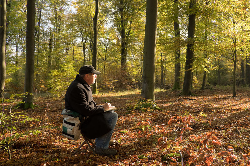 Side view of man sitting on chair in forest