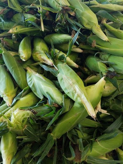 Corn Eats Food Food Photography Freshly Picked Fruit And Vegetable Fruits And Vegetables Summer Corn