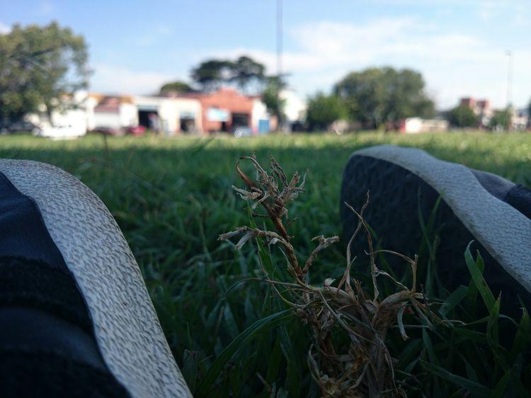 Depth Of Field Death between