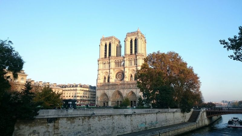 Notre Dame De Paris Water_collection Walking Around The City  Happy Halloween Heart Of Stone Light And Shadow Seeing The Sights