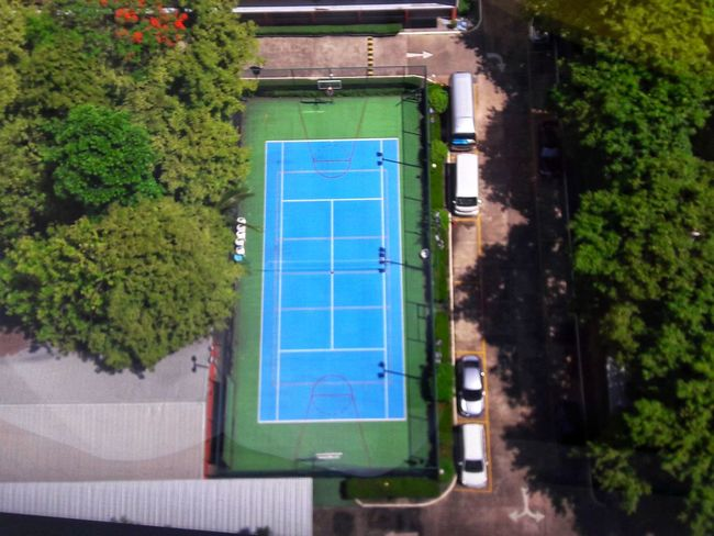 Tree Soccer Field Basketball - Sport Sport Court Playing Field Aerial View Stadium Tennis High Angle View