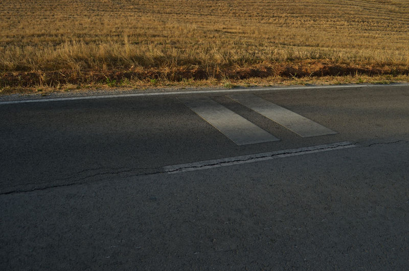 The special light,on a road int he south of Portugal..little moments of a trip :) Grass Road Roads South Abstract Detail Dried Landscape Mediterrean Road Marking Roadtrip Summer Tarmac