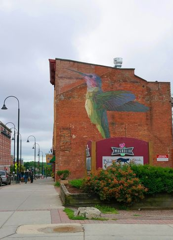 Walking around the streets of burlington. Taking Photos Hanging Out Hummingbird Eyeem Travel EyeEm Best Shots EyeEm Awards 2016 Burlington VT Burlington Vermont Mural Art Building Exterior Bird Photography Street Photography Graffiti Art Bird Art Colors Summertime Citylife New England  Lake Champlain Building Art Large Check This Out Samsungphotography