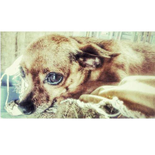 My Baby Love He <3 Neném Soninho