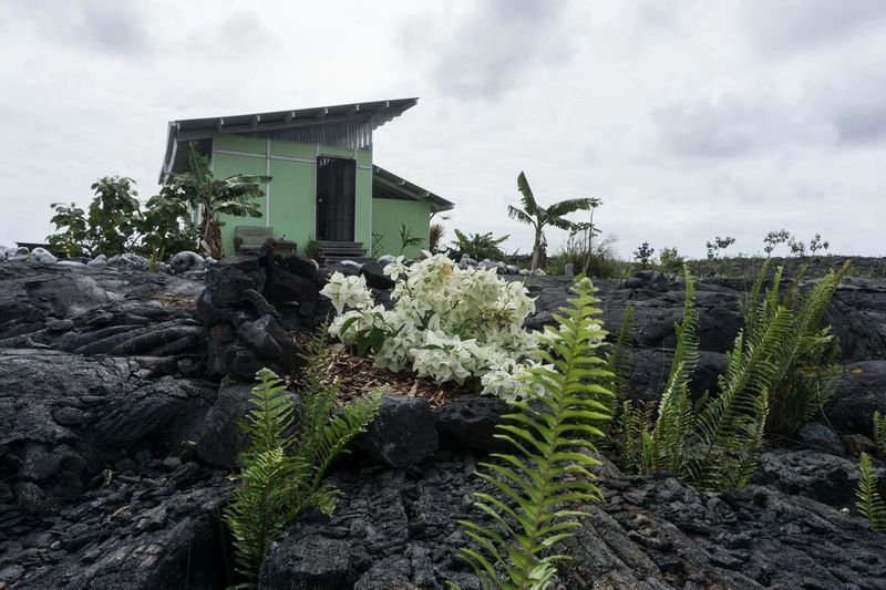 Kalapana getaway Lava Cloud - Sky Sky Plant Built Structure Architecture Growth Nature Outdoors Beauty In Nature