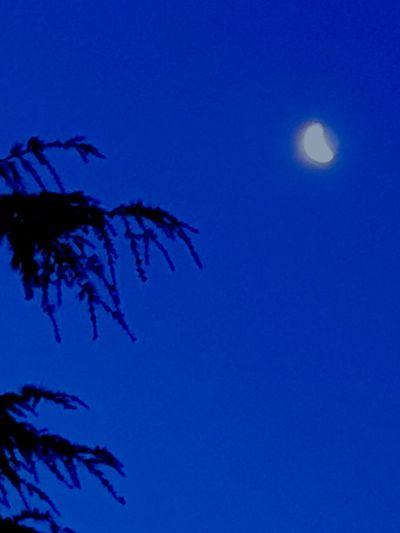 Moon Low Angle