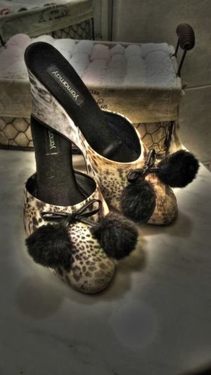Fashion Shoes Fashion Trendy Hdr_Collection Fashion Design