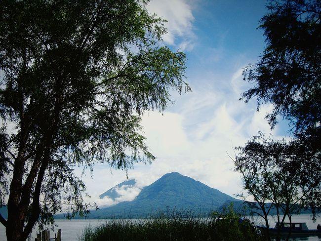 Nature Sky Nature Photography Exterior Cielo Outdoor Photography Macro Photography Naturaleza Naturaleza Maravillosa Natural Beauty Hojas Lagos Arboles Trees Guatemala Lago De Atitlan