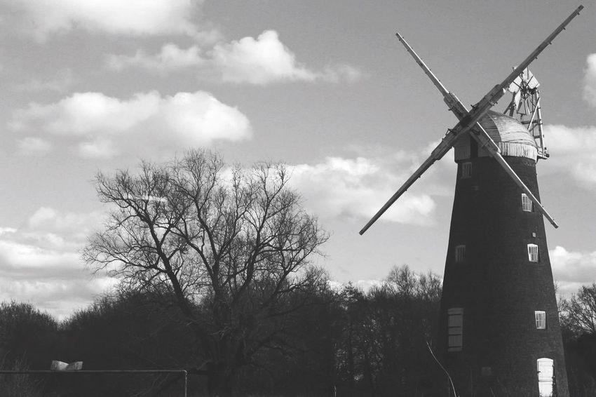 Windmill B&w