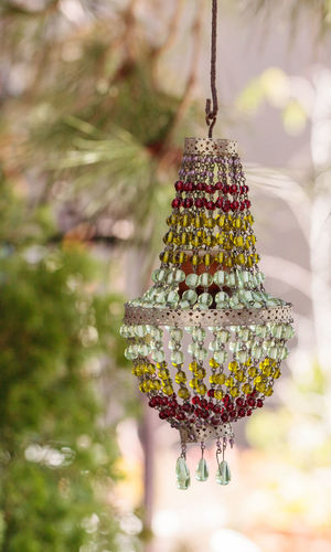 Red, yellow and green colorful rainbow crystal chandelier hangs outside in a garden Branch Chandelier Christmas Tree Close-up Complexity Creeper Crystal Day Decoration Extreme Close-up Focus On Foreground Green Color Hanging Intricacy Nature No People Ornament Outdoors Plant Rainbow Selective Focus
