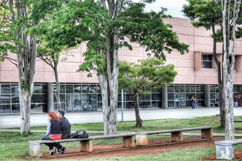 Parque da