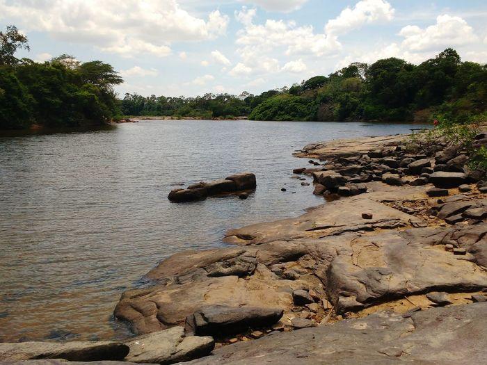 Rio Tacutu Tree Water Tranquility Nature Outdoors No People Landscape Beauty In Nature Brazil Guyana TacutuRiver Roraima Tacutu Lethem Clickbyjoniocosta