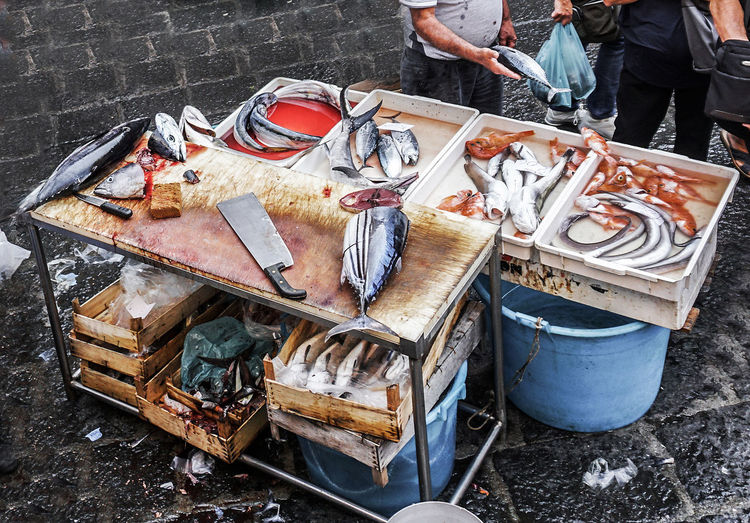 At the fish market in Catania, Italy High Angle View No People Fish Sish Market Catania Sicily Blood Street Photography Streetphotography Travel Destinations Travel Photography Food And Drink Food Freshness Large Group Of Objects Knife Vendor Buying