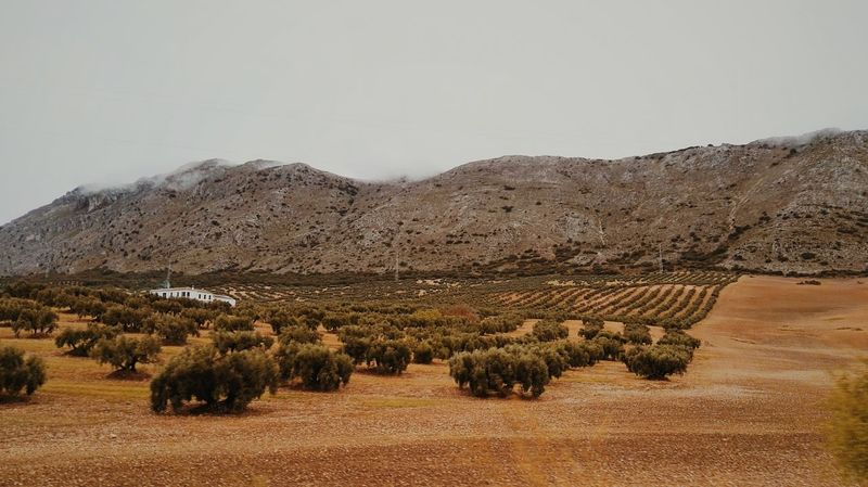 Fieldscape Andalusia Theme Textured  Textured  Cultures Roadway Mountain No People Roadtrip ✌ First Eyeem Photo Andalucia, Spain Outdoors Astronomy Architecture Tree Malaga Storm Cloud Cloud - Sky Water Foggy Landscape Textured  Textured  Landscape Scenics Textured