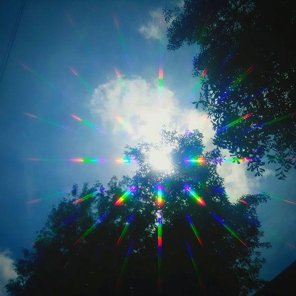 Holo collection: sunlight Tree Celebration Arts Culture And Entertainment Night Multi Colored Low Angle View No People Outdoors Technology Sky Spectrum Neon Holo Collection Holographic Filter Holographic EyeEm Diversity Day Beauty In Nature Nature Tree Cloud - Sky Break The Mold The Great Outdoors - 2017 EyeEm Awards