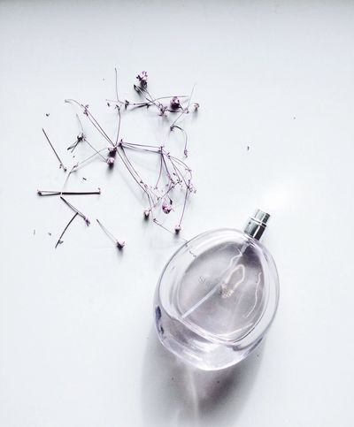 You are never fully dressed without a perfume Vanity White Background Minimalism Close-up Women Still Life Beauty Fragrance Purple Flower Purple Minimalobsession VSCO IPhoneography Simplicity Simplicity Is Beauty. Scent