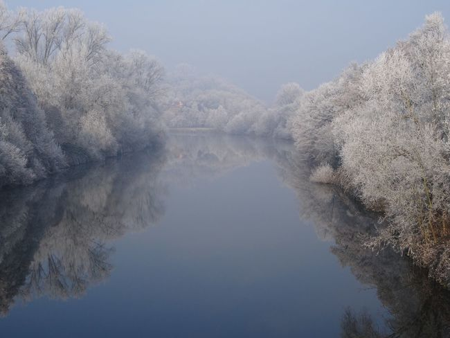 Nature Tree Beauty In Nature Tranquility Tranquil Scene No People Scenics Water Clear Sky Outdoors Sky Day Mountain Tranquility Standing Water Symmetry Winter Wonderland White Frost Neckar River Mirror Germany New Year Snow Dreaming Reflection