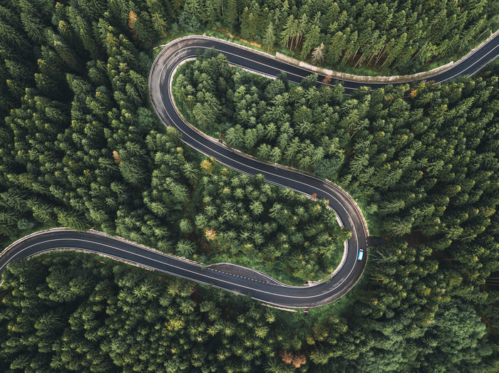 Aerial view of winding road during amidst trees