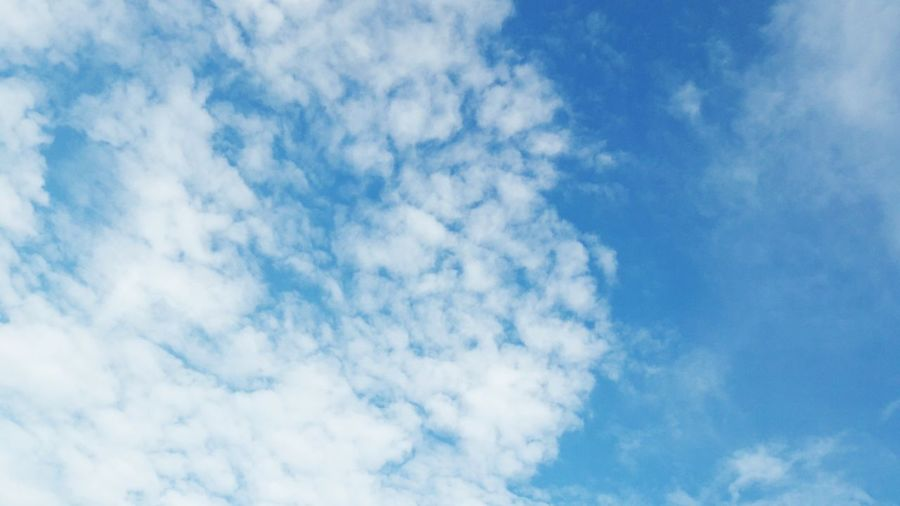 blue sky with cloud Blue Cloud - Sky Sky Cloudscape Backgrounds Nature Heaven Wind Sky Only No People Abstract Low Angle View Textured  Summer Day Beauty In Nature Outdoors Scenics Flying Space