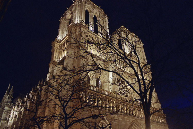 Cathédrale Notre-Dame de Paris Night Lights Night Photography Notre Dame De Paris Architecture Bare Tree Belief Building Building Exterior Built Structure Clock Gothic Style History Illuminated Low Angle View Nature Night No People Outdoors Place Of Worship Religion Sky The Past Tower Travel Destinations Tree My Best Travel Photo
