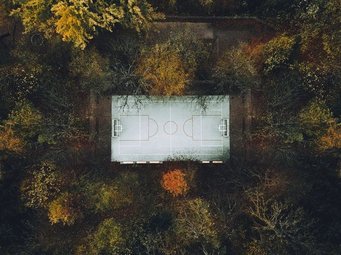 Drone  Autumn Leaf Day Outdoors No People Tree Nature Close-up Dronephotography Drone Photography Field Court Basketball Basketball Court Fresh On Market 2017