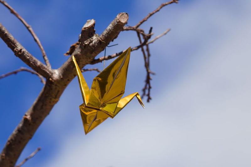 Low angle view of yellow hanging against sky
