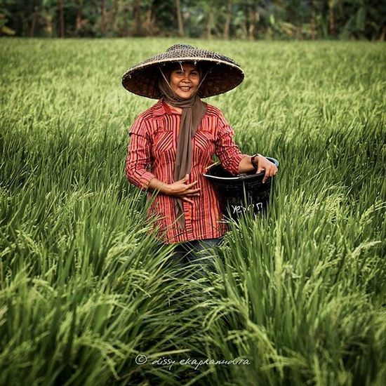 Happy world food day Worldfoodday Farmer Woman Petani INDONESIA 1000kata Instalike Instagram Instagood Instadaily Instamood Photooftheday Paddyfield Asiangeographic