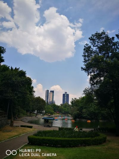 Mexico City Urban Skyline Tower Chapultepec CDMX