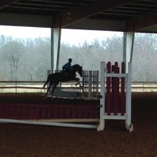 Riding My Horse