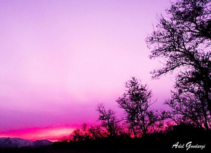 The Week On EyeEm 7 Iran♥ The Week Of Eyeem EyeEm Best Shots Sunset Arak Capture The Moment I Love My City My Shot  EyeEm Nature Lover