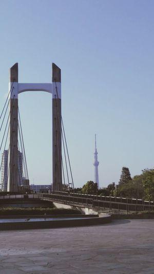 Tokyo,Japan Tokyoskytree 木場公園大橋 Bridge