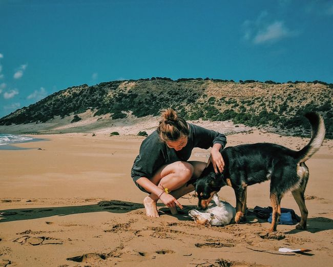Woman Crouching By Playful Dogs At Beach
