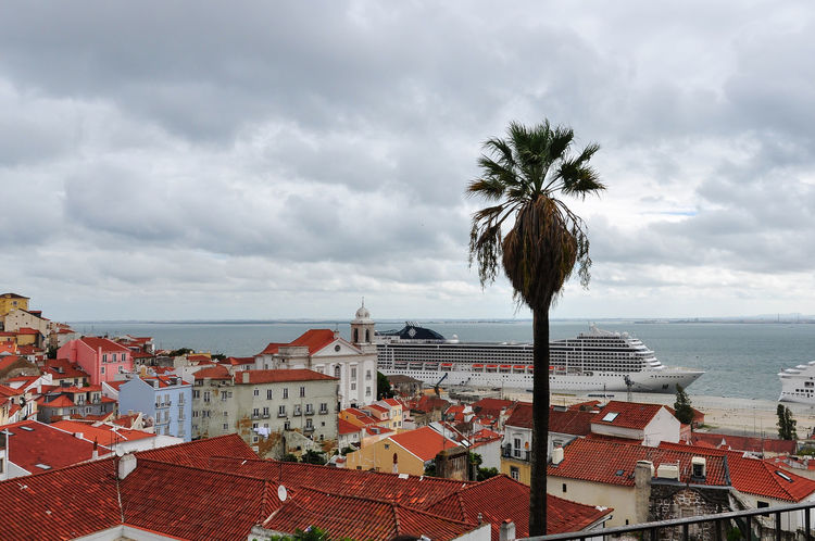 Lisbon roofs Architecture Building Exterior Built Structure Capital Cities  City Cloud - Sky Growth High Angle View Horizon Over Water Lisbon Nature No People Ocean Outdoors Palm Palm Tree Roof Rooftop Scenics Sea Tall - High Tranquility Tree Water