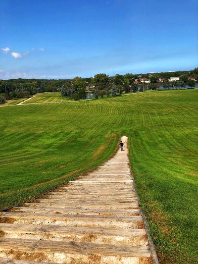Going down the stairs Horizon Over Land Blue Sky Green Nature Stairs Plant Sky Landscape Field Tranquility Nature Green Color Land No People Footpath Sunlight Environment Outdoors Scenics - Nature Beauty In Nature Tranquil Scene Growth Day Grass Tree