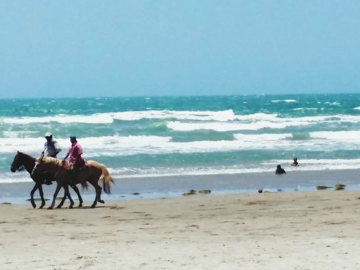 Beach Domestic Animals Riding Sea Horse Sand Lifestyles Water Horseback Riding Vacations Tranquil Scene Tranquility Blue First Eyeem Photo