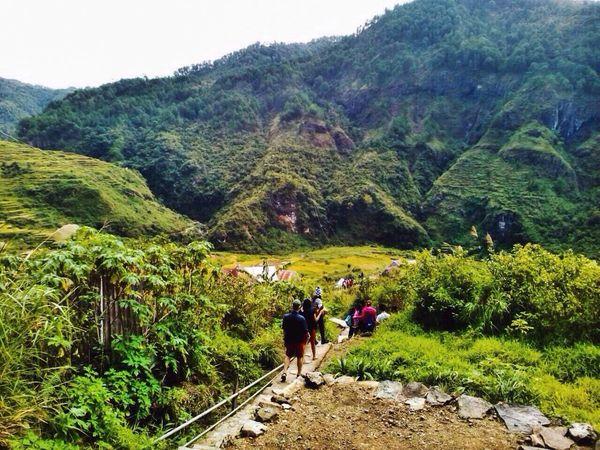 On the way to Bumod ok Falls, Sagada. Ricefield RiceTerraces Mountain Trekking Mountainprovince Sagada Traveller Philippines