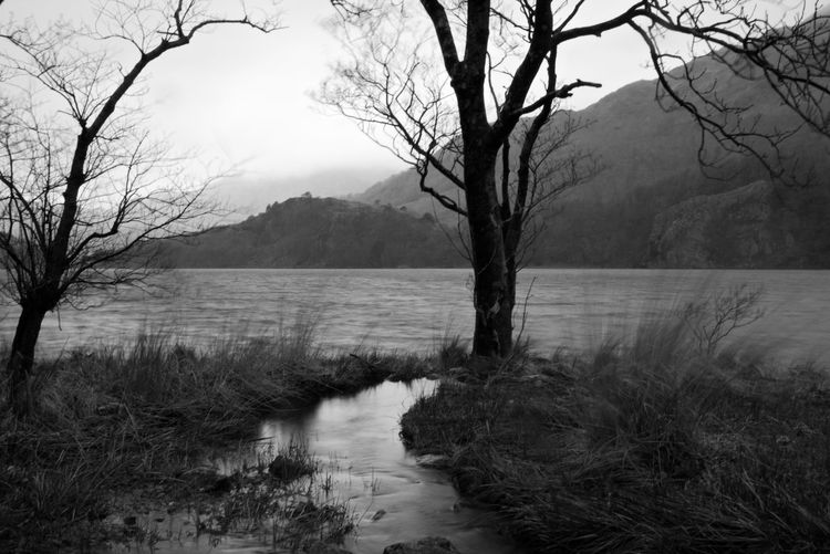 Black And White Photography Black And White Welsh Countryside Flowing Water Wales Tree Water Bare Tree Lake Fog Mountain Reflection Sky Landscape Stream - Flowing Water Flowing Stream