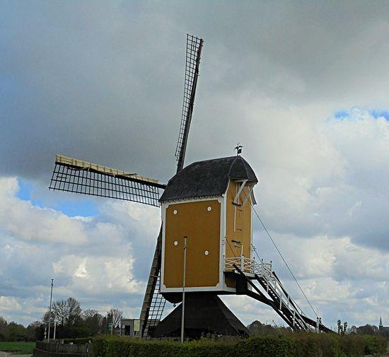 DitisLimburg Windmill Bluesky 🌈🌈🌈 Klein Genhout Super_holland Bestskyever Limburg Limburg Nederland L1 Prachtig_limburg