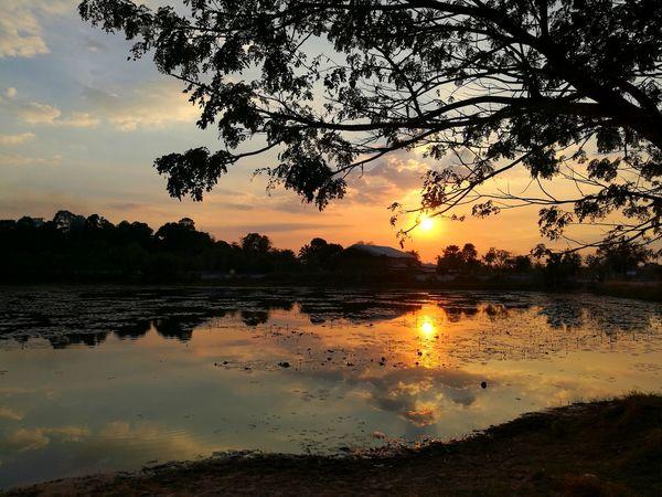 Sunset Reflection Silhouette Lake Water Tree Nature