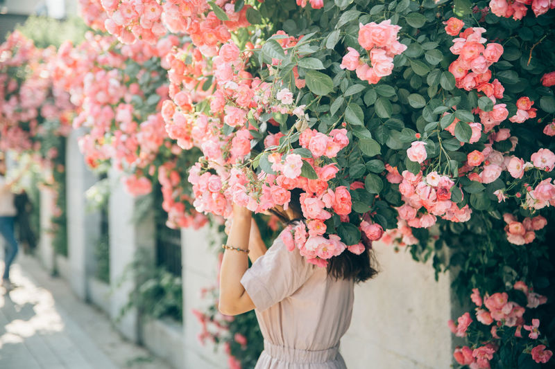 Woman standing below pink flowering plants